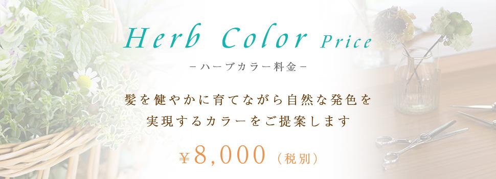 ハーブカラー料金 8,000円(税別) 髪を健やかに育てながら自然な発色を実現するカラーをご提案します